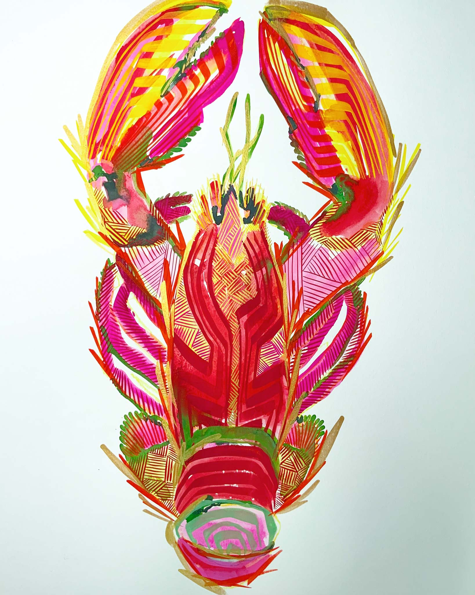 gouache, singular subject lobster in reds, pinks, greens, white ground, bold lines, layered lines create form, graphic style