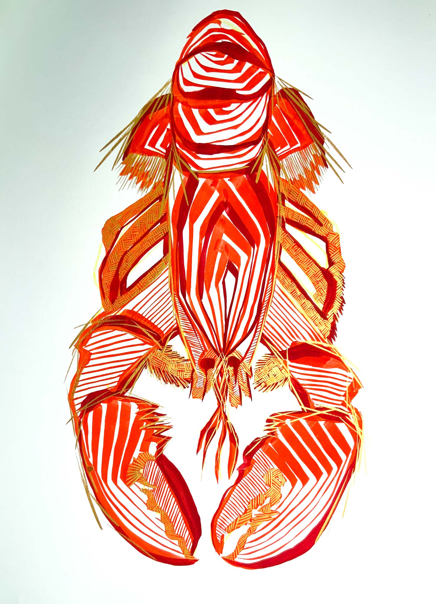gouache, singular subject lobster in reds and gold, white ground, bold lines, layered lines create form, graphic style